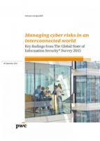 Managing Cyber Risks