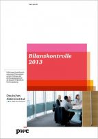 Bilanzkontrolle 2013